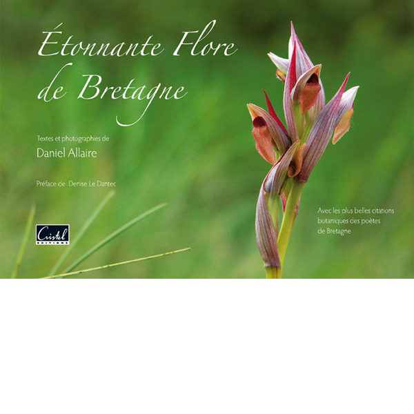 etonnante flore de bretagne